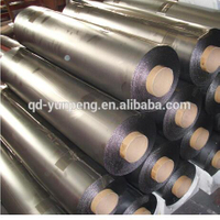 Factory Flexible Graphite Paper for Heat Sink or Sealing